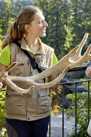 Lebensraum - Tiere und Pflanzen - Natur- und Tierpark Goldau