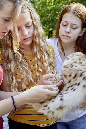 Unsere Tiere und Pflanzen - Natur- und Tierpark Goldau