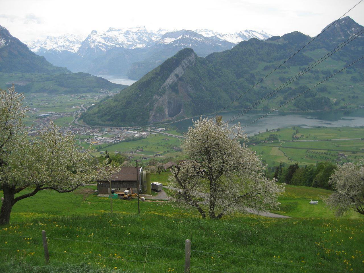 Ferienwohnung Suter - Schwyz