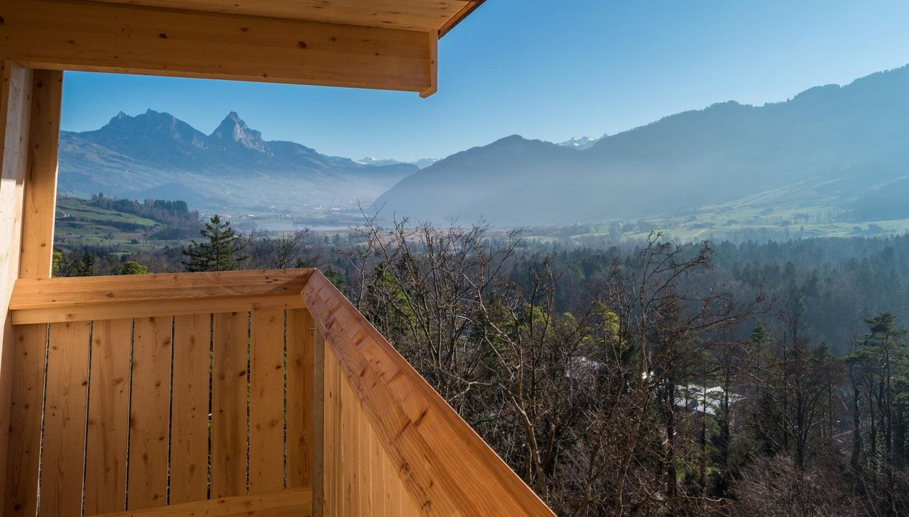Aussicht vom Turm im Natur- und Tierpark Goldau