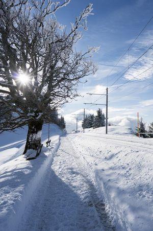 Schneeschuhtour «3 Gänge - 3 Gastgeber»