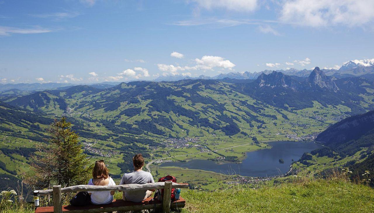 Aussicht von der Rigi Scheidegg. Im Hintergrund die Mythen.