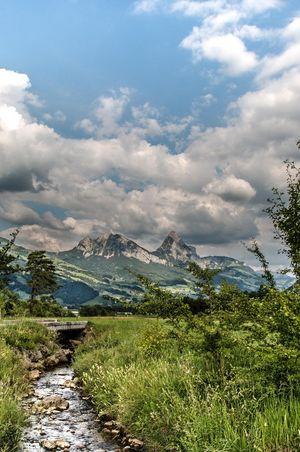 Naturschutzgebiet Sägel-Schutt