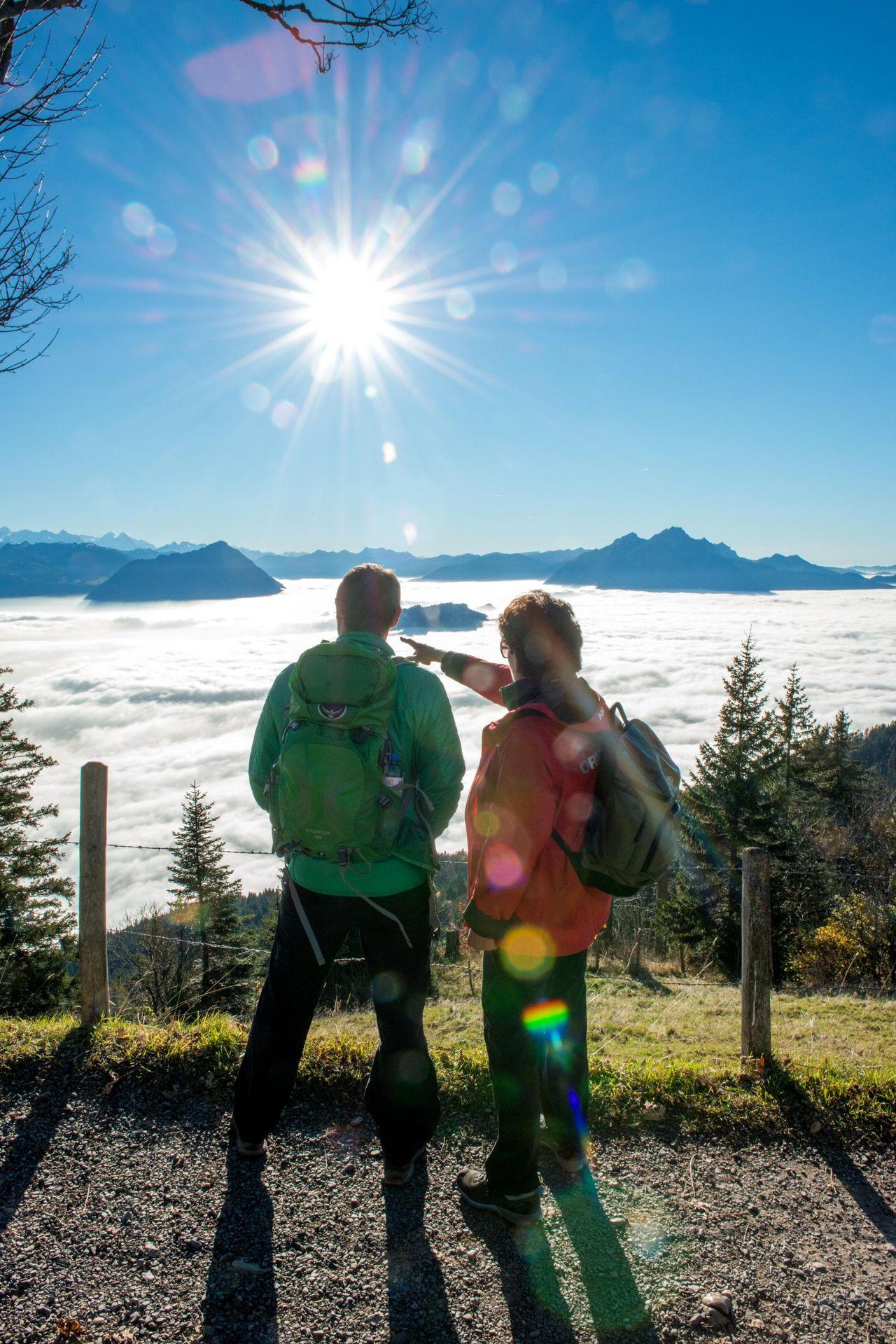 B) Etappe: Rigi Scheidegg - Rigi Kaltbad