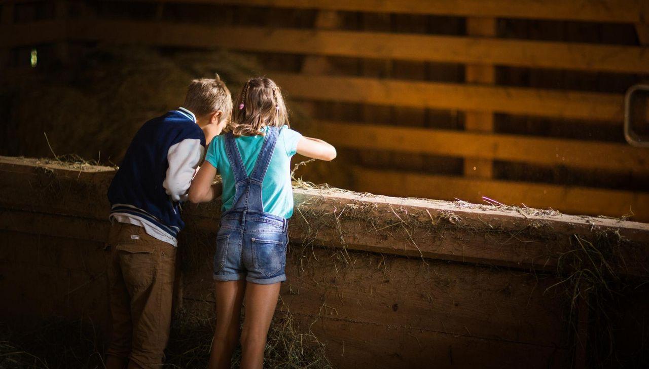 Zwei Kinder im Stall des Fronalphofs