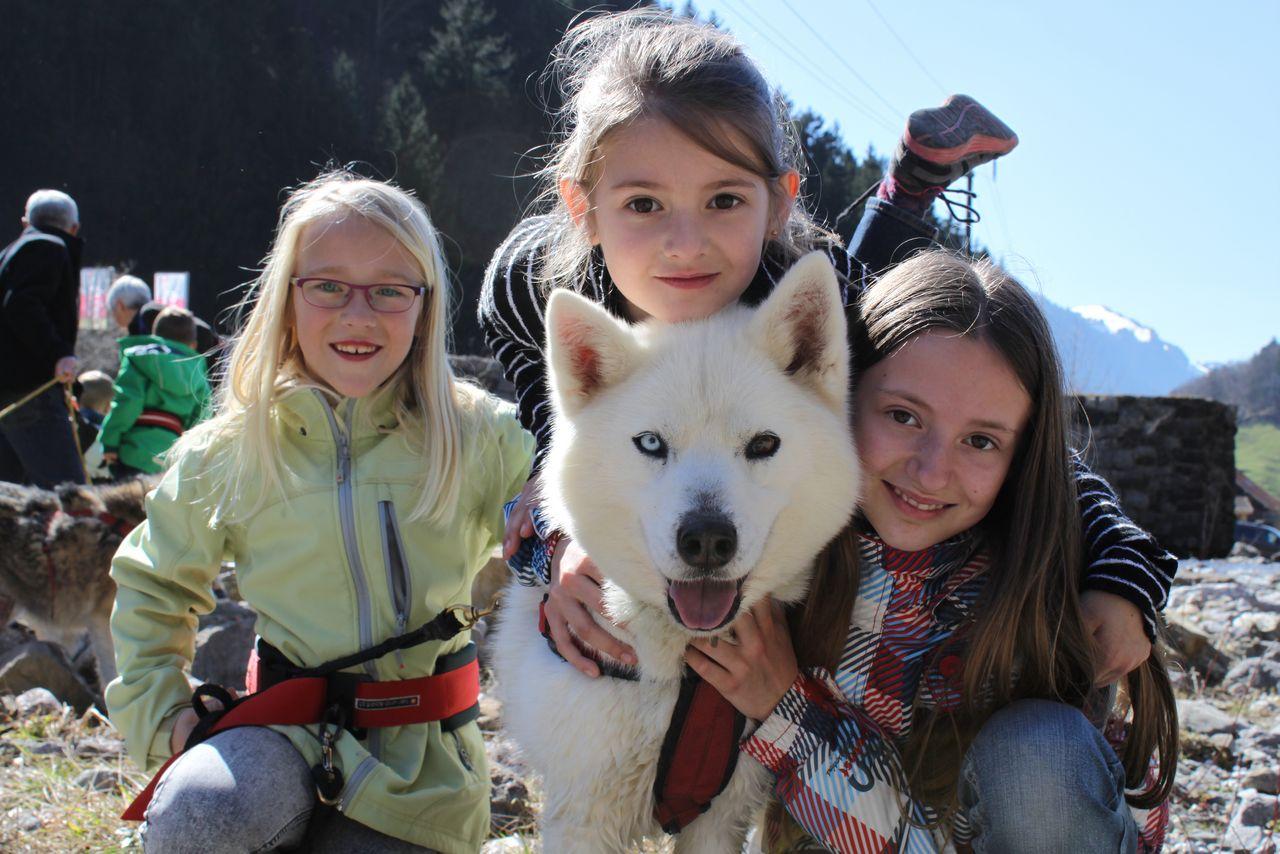 Sommer-Ferienprogramm, Husky-Traum