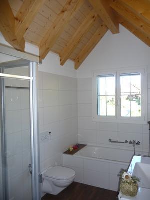 2-Zimmerwohnung RIGI