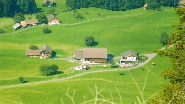 Guntern in Lauerz