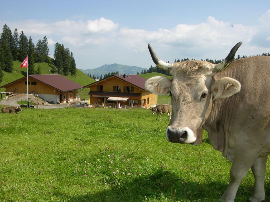 Fronalp-Tour - SchweizMobil Route 801